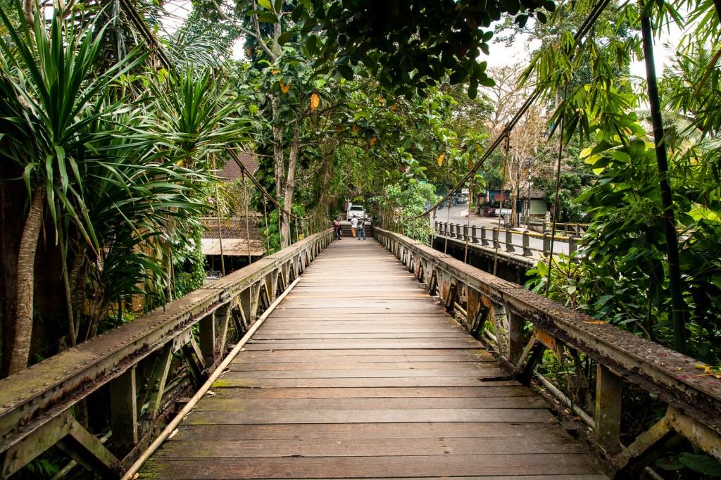 Bali (20)