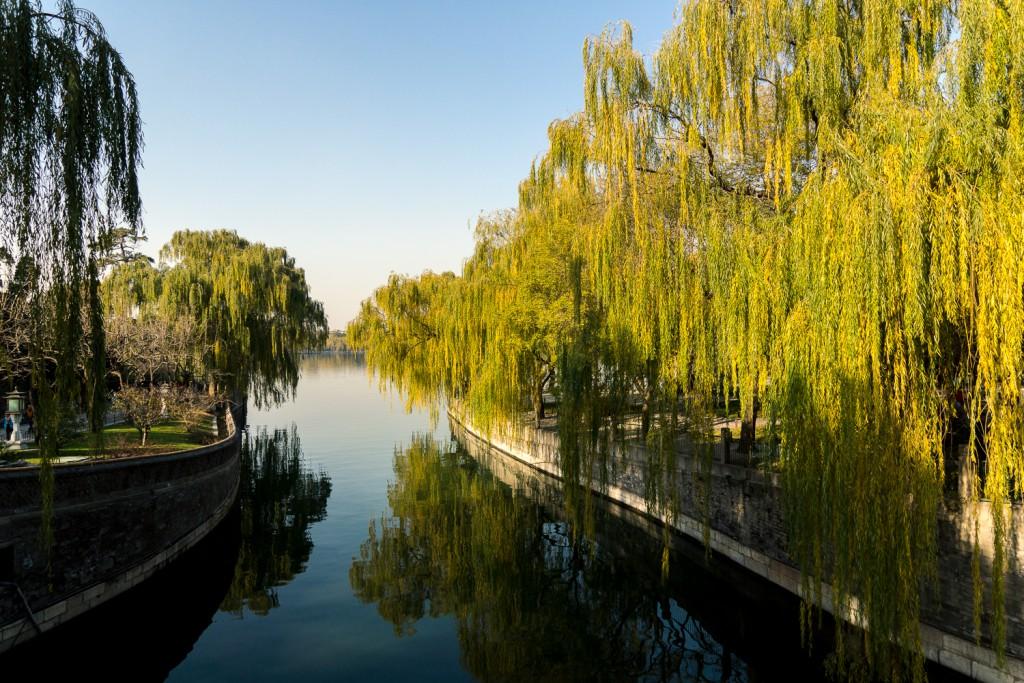 Peking (14)